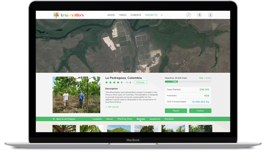 Plant trees with Tree-Nation's plantation projects