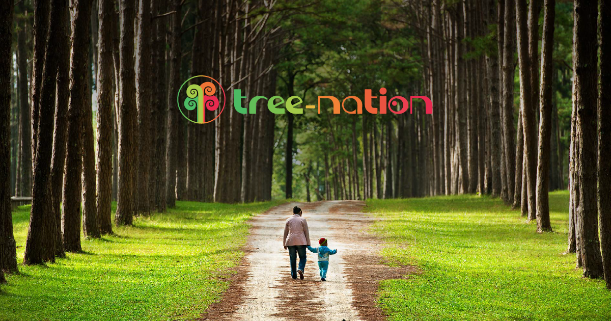 TreeNation The worldwide platform to plant trees